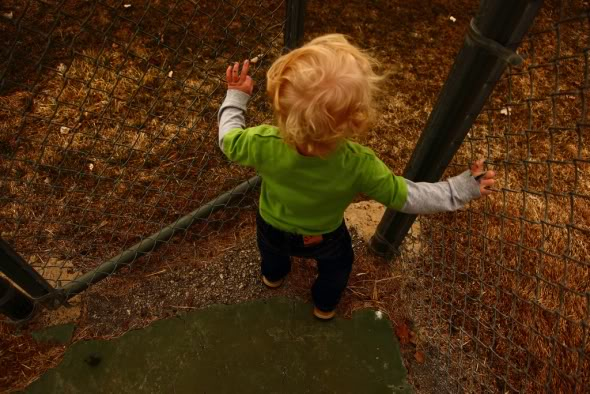 Opening The Playground Gate